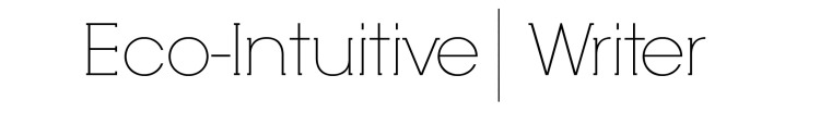 ecointuitive