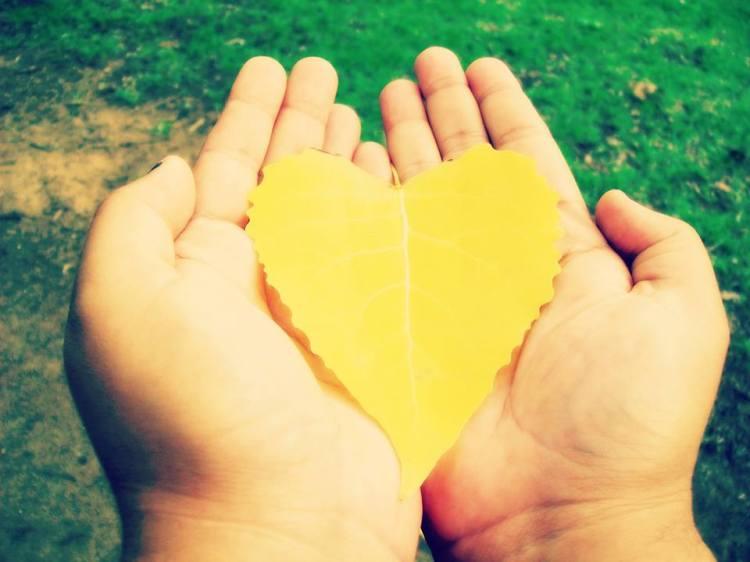 GAIA LOVE