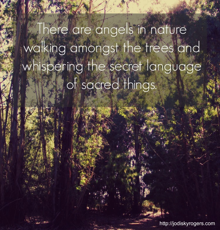 angels in nature