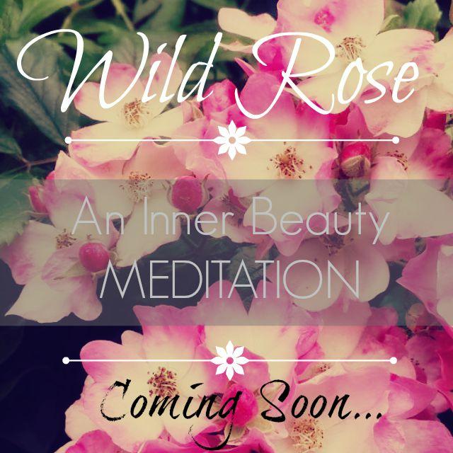 wild rose promo