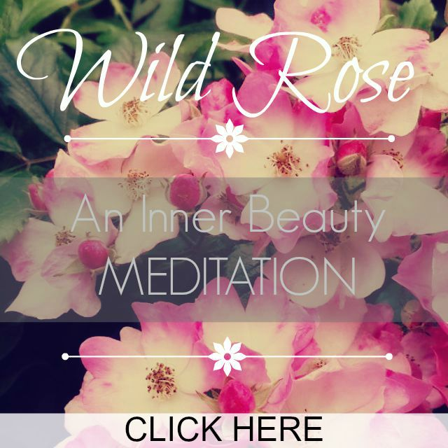 wild rose meditation click here
