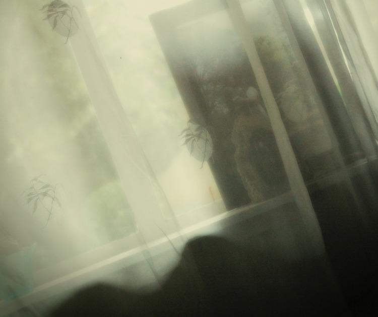 wedding pic on window sill