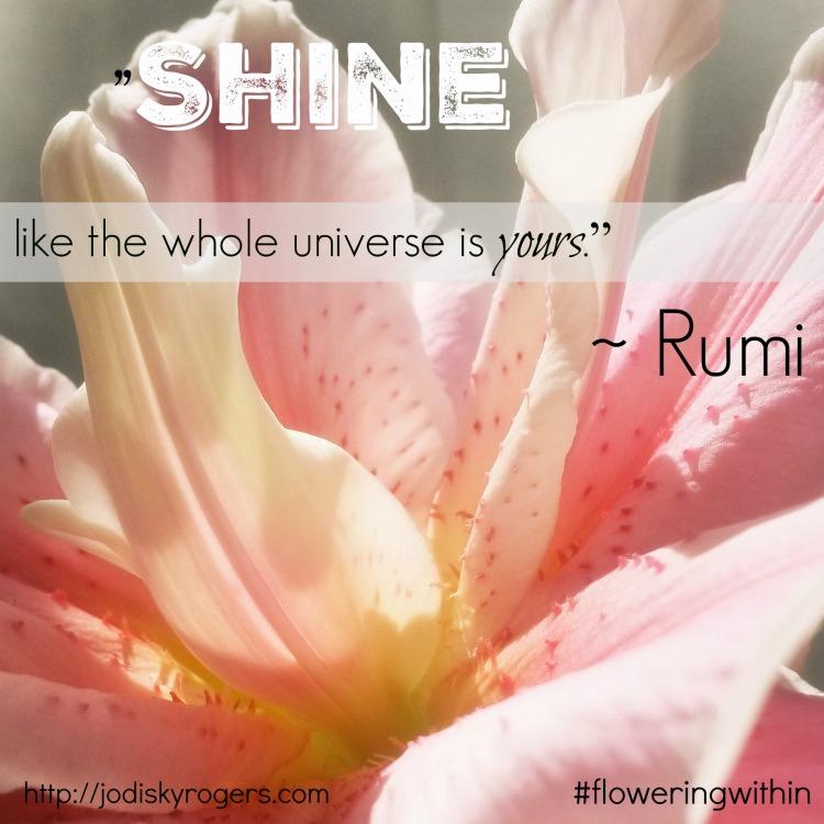 Monday Shine